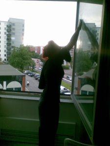 fönster 5